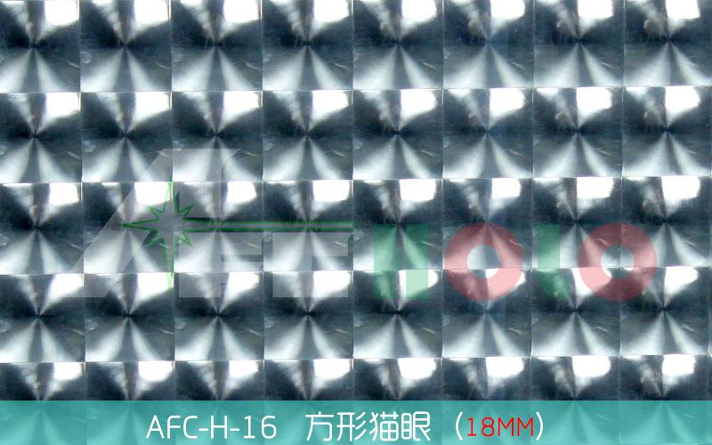 全息透镜膜-S16