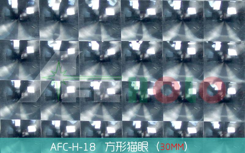 全息透镜膜-S18