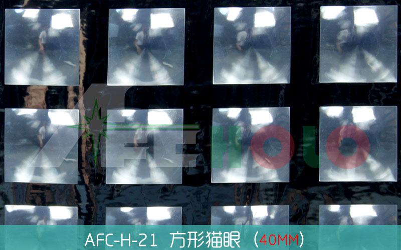 全息透镜膜-S21