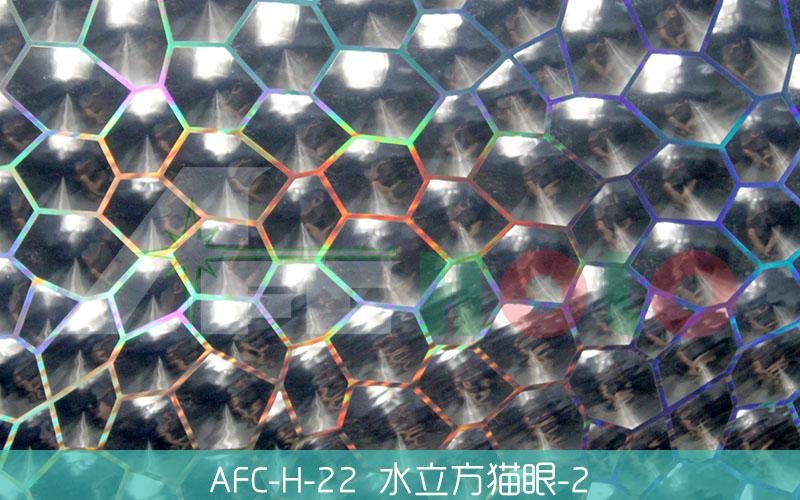 全息透镜膜-S22